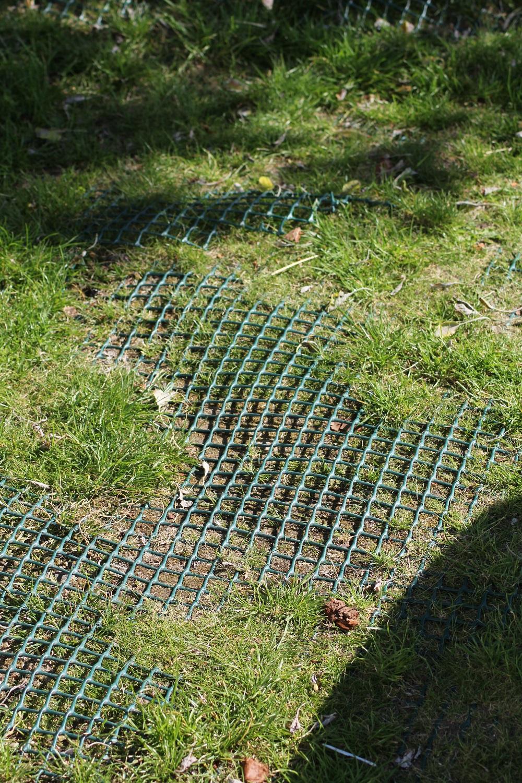 Grass Reinforcement Mesh The Rubber Company