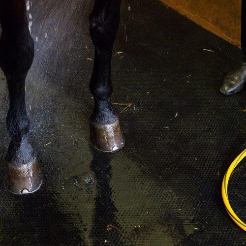 stable-wash-bay-matting