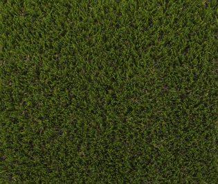 Wow+ Artificial Grass